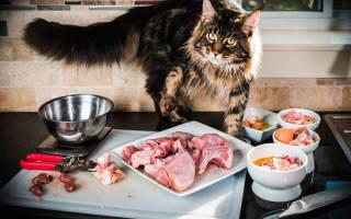 Корм Перфект Фит (Perfect Fit) для кошек