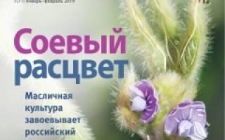 Разведение страусов в России