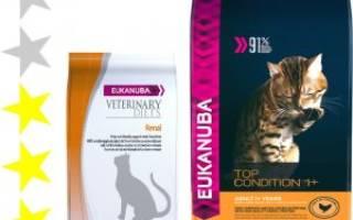 Корм Эукануба (Eukanuba) для кошек