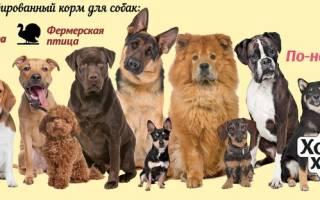 Корм Хороший хозяин для собак