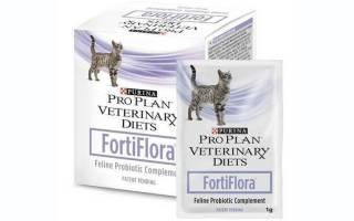 Пищевая добавка фортифлора для кошек