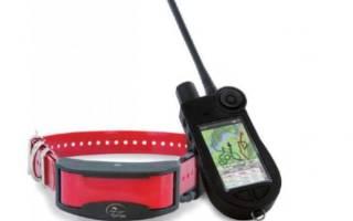 Ошейники для собак с GPS