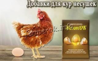 Кормовые и минеральные добавки для кур