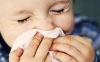Аллергия на кролика: симптомы и причины