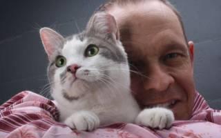 Кто мы для кошек