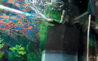 Зачем компрессор в аквариуме