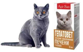 Гепатовет для кошек и котов