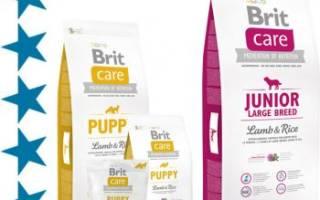 Корм для собак Брит Каре (Brit Care)