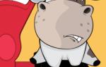 Средний вес быка: информация для скотовода