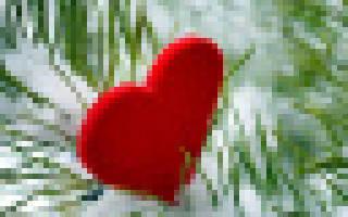 Фелинотерапия: действительность или вымысел