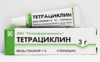 Тетрациклиновая мазь для кошек при лечении заболеваний глаз