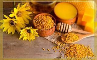 Продукты пчеловодства: перга и ее применение